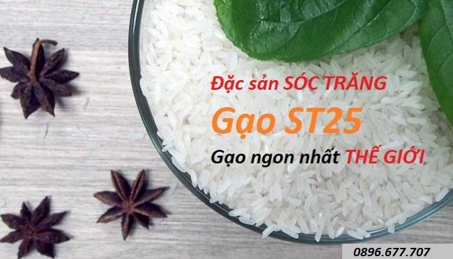 đặc tính gạo st25